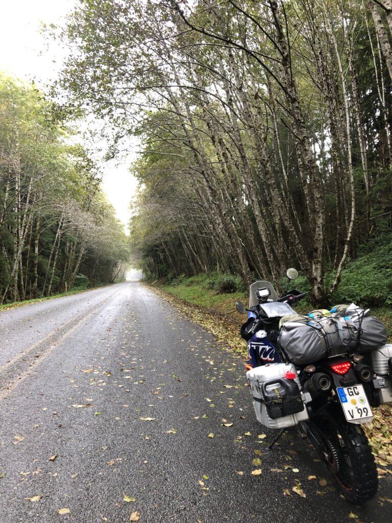 Fahrt durch den Regenwald