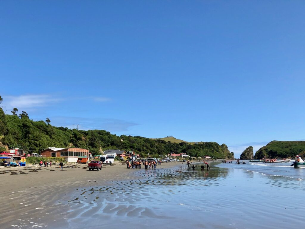 Strand in Puñihuil
